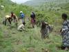 30万本の植林に挑戦中